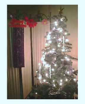 PTLのクリスマス盛り付け完了!