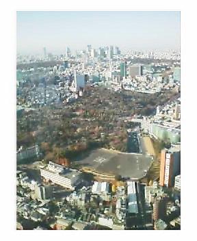 六本木ヒルズ51階の眺め