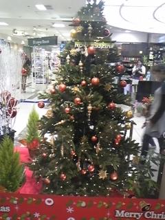 クリスマスまであと二週間☆