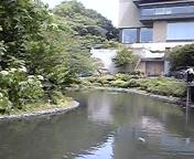 TOEIC満点講師ウィットロック慶子@フォーシーズンズホテル椿山荘ジョギング中